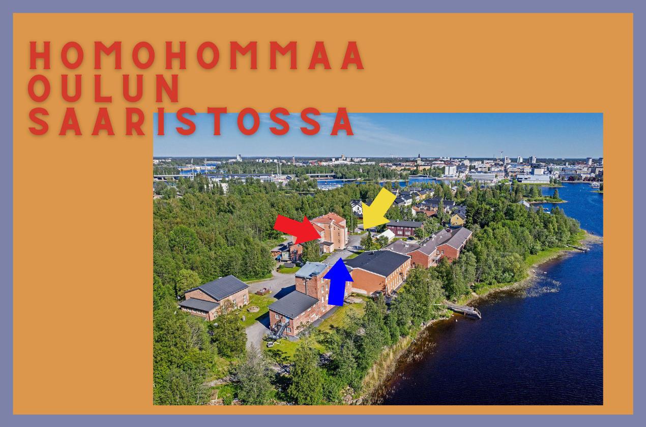 Homohommaa Oulun saaristossa